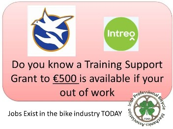 receive bike mechanics grant Ireland